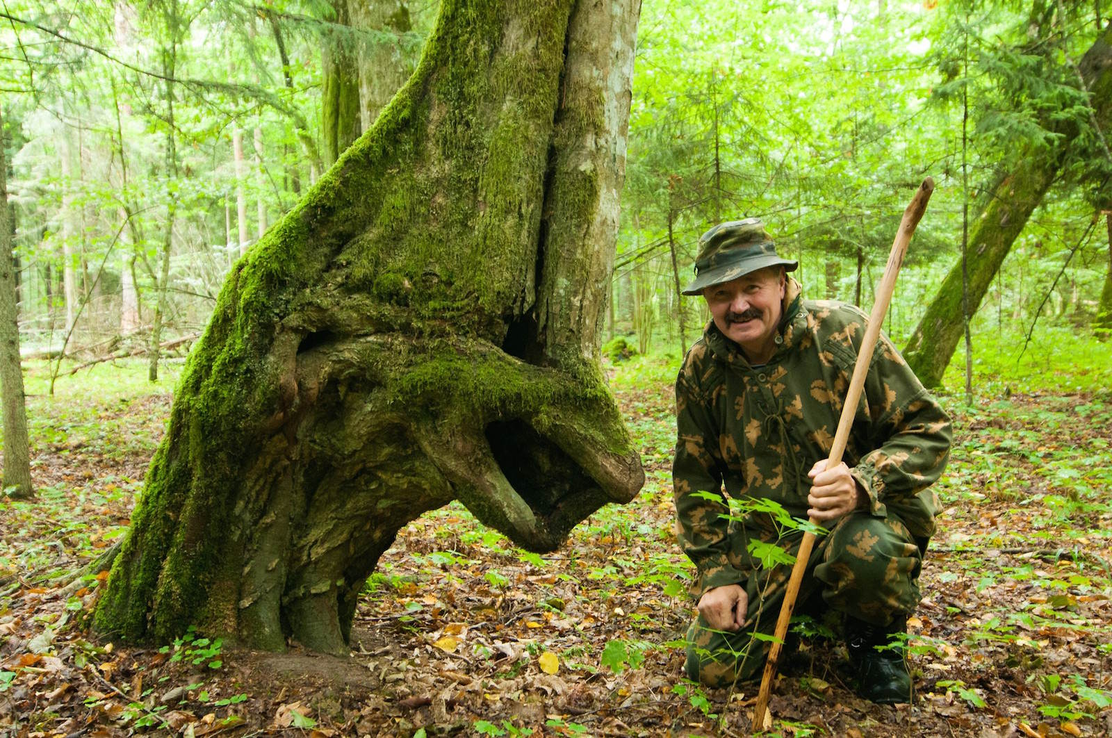 Forester and tree face Belarus