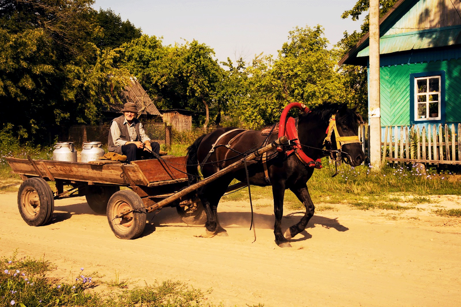 Man with horse-drawn carriage Belarus