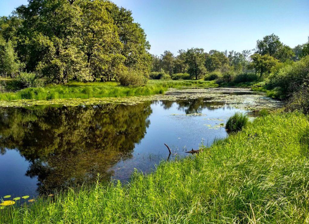 River landscape Belarus