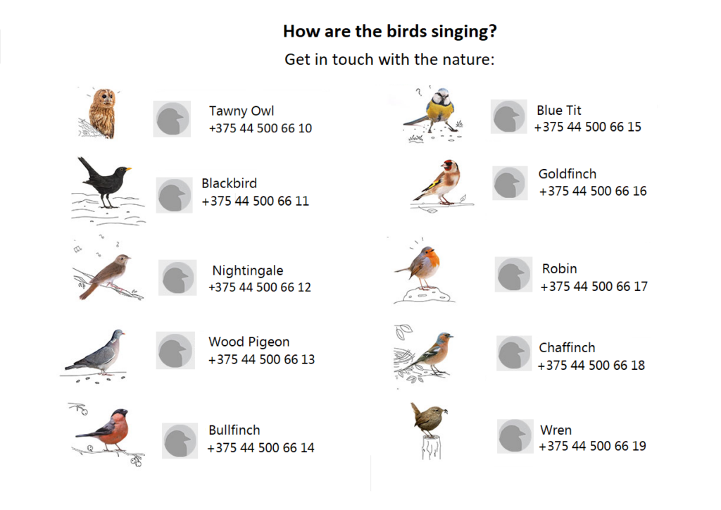 Birds in Belarus